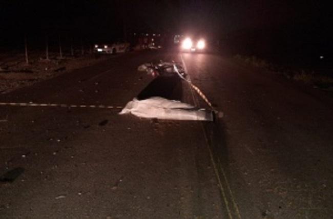 Motociclista morre após se chocar com animal em rodovia